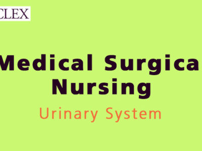 NCLEX 3500 – Urinary System